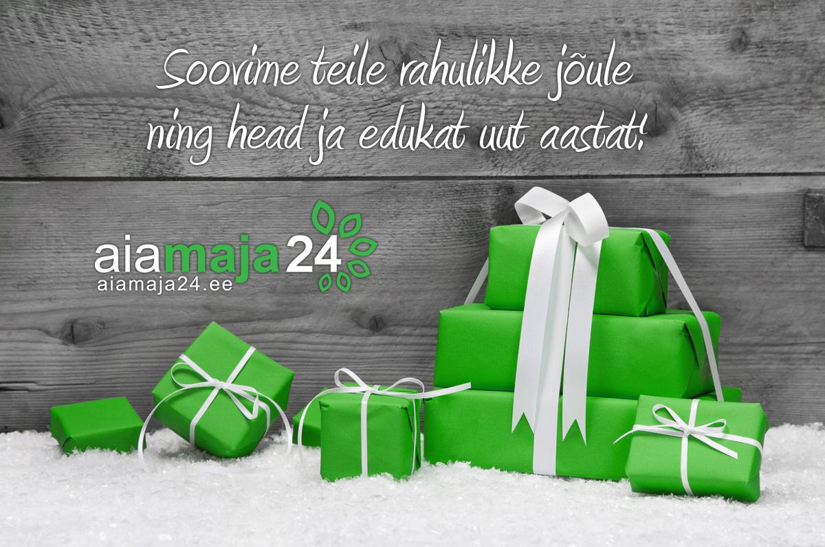 Soovime teile rahulikke jõule ning head ja edukat uut aastat!