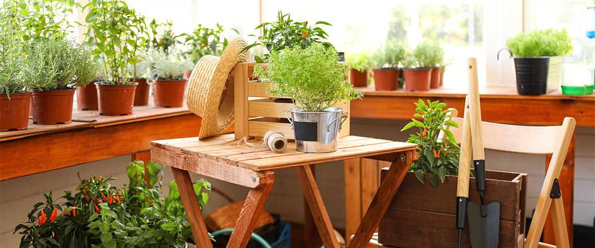 Aiamaja keset rohelust ehk hästi hoolitsetud aia eelised
